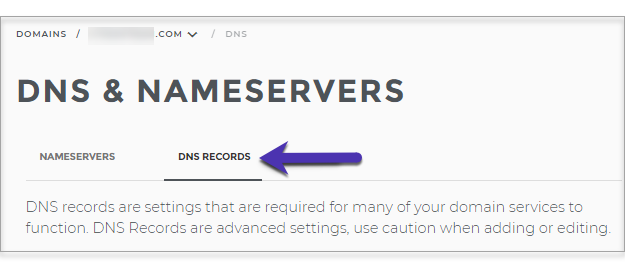 Domain.com_DNS_Records.png